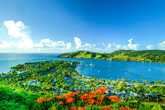 There's so much to explore in the Caribbean. In this guide, we'll cover Antigua, Grand Cayman, Turks and Caicos, and Saint Lucia. Read about them now!