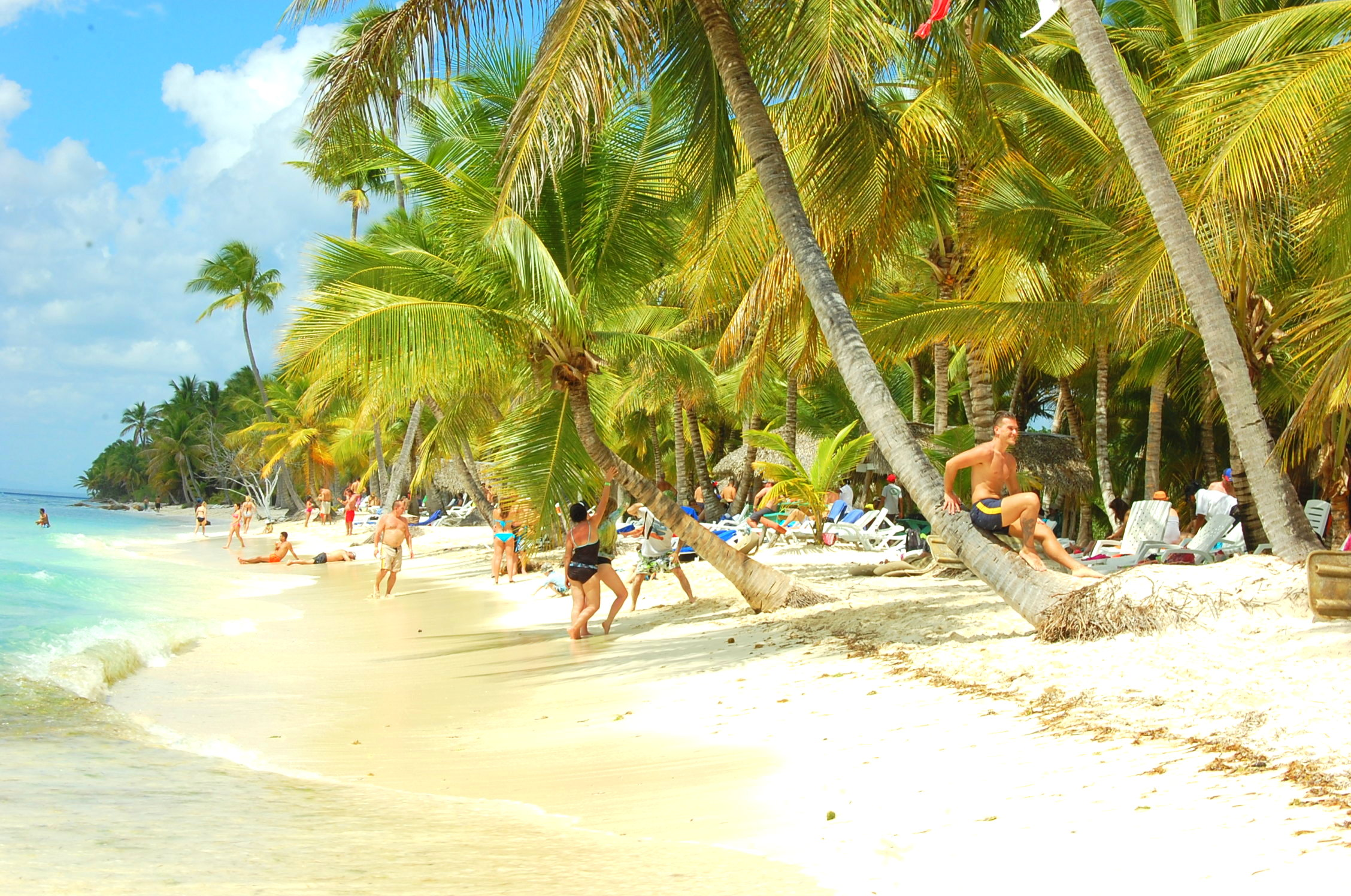Discover what our top 5 excursions are in the Dominican Republic.
