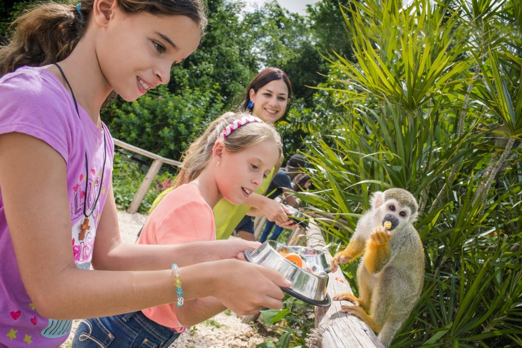 Girls feeding a monkey on an excursion in Monkey Land in the Dominican Republic.