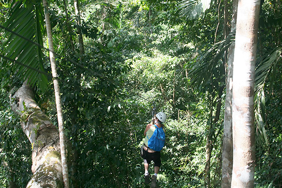 Woman zip lining into a forest.
